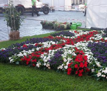 Blumen·schmuck in Heidelberg