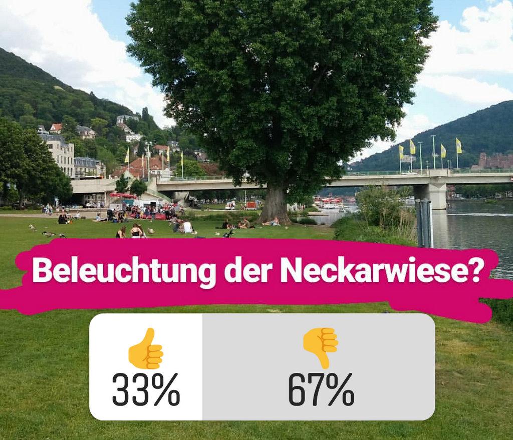 Umfrage Beleuchtung Neckarwiese