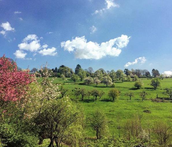 Grüne Landschaft bei Kloster