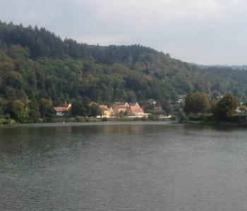 Blick vom Schiff auf das Neckarufer